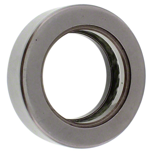 FE00893 - Pivot Thrust Bearing
